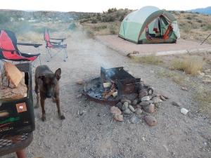 Yay, camping!