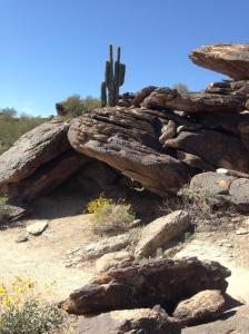 South Mountain, Phoenix AZ; Photo Credit: Doree Weller