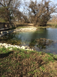 Berry Springs Park, TX Photo Credit: Doree Weller