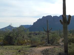 San Tan Mountains, Arizona Photo Credit: Doree Weller