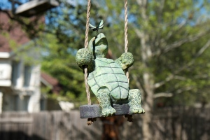 Turtle on a Swing, Austin TX Photo Credit: Doree Weller