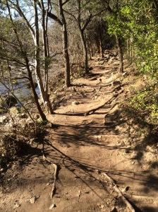 Barton Creek, Austin TX Photo Credit: Doree Weller