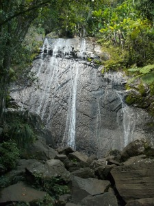 Waterfall in El Yunque National Forest, Puerto Rico Photo Credit: Doree Weller